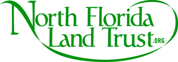 NFLT_Green_logo349