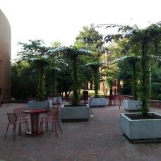 Unity Plaza grounds, inspiration image.