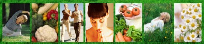 2Healthy_natural_holistic_health