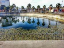 """Meredith, """"A view of the large water feature as it is now (changes to come!)."""""""